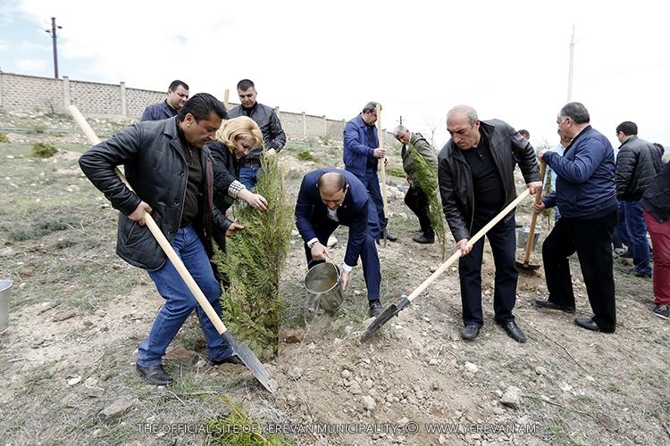Мэр Еревана вновь обратился к факту вырубки деревьев в Давиташене: Этому вандализму нет оправдания, виновник должен быть наказан