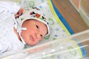 359 babies were born in Yerevan from January 26 to February 1