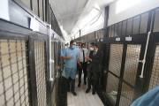 Հայկ Մարությանը ծանոթացել է «Թափառող կենդանիների վնասազերծման» ՀՈԱԿ-ի նոր շենքի ու կլինիկայի պայմաններին